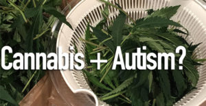 P450 Proxy - Cannabis Treatment for Autism